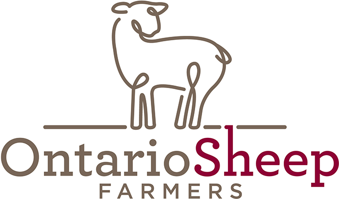 Ontario Sheep